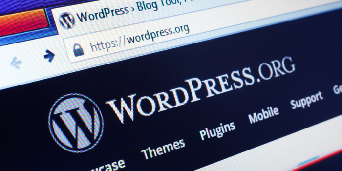 5 Reasons Why International Companies is Using WordPress